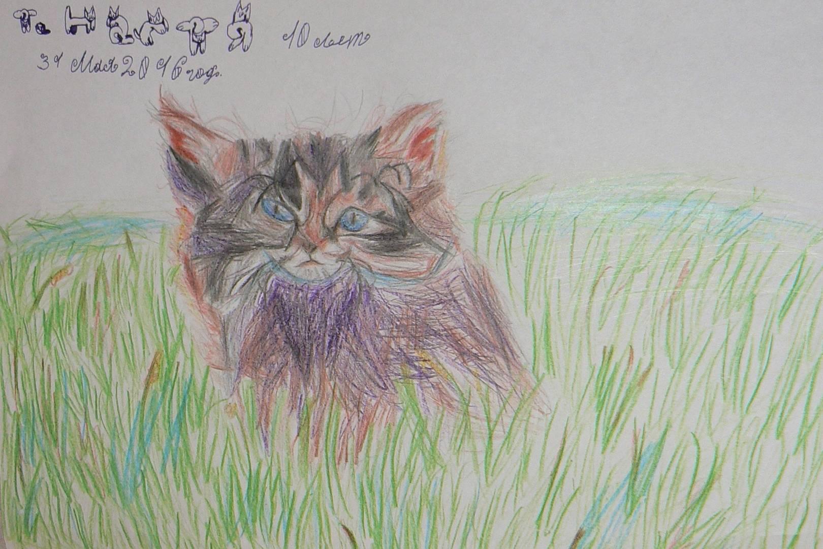 Котёнок на траве.