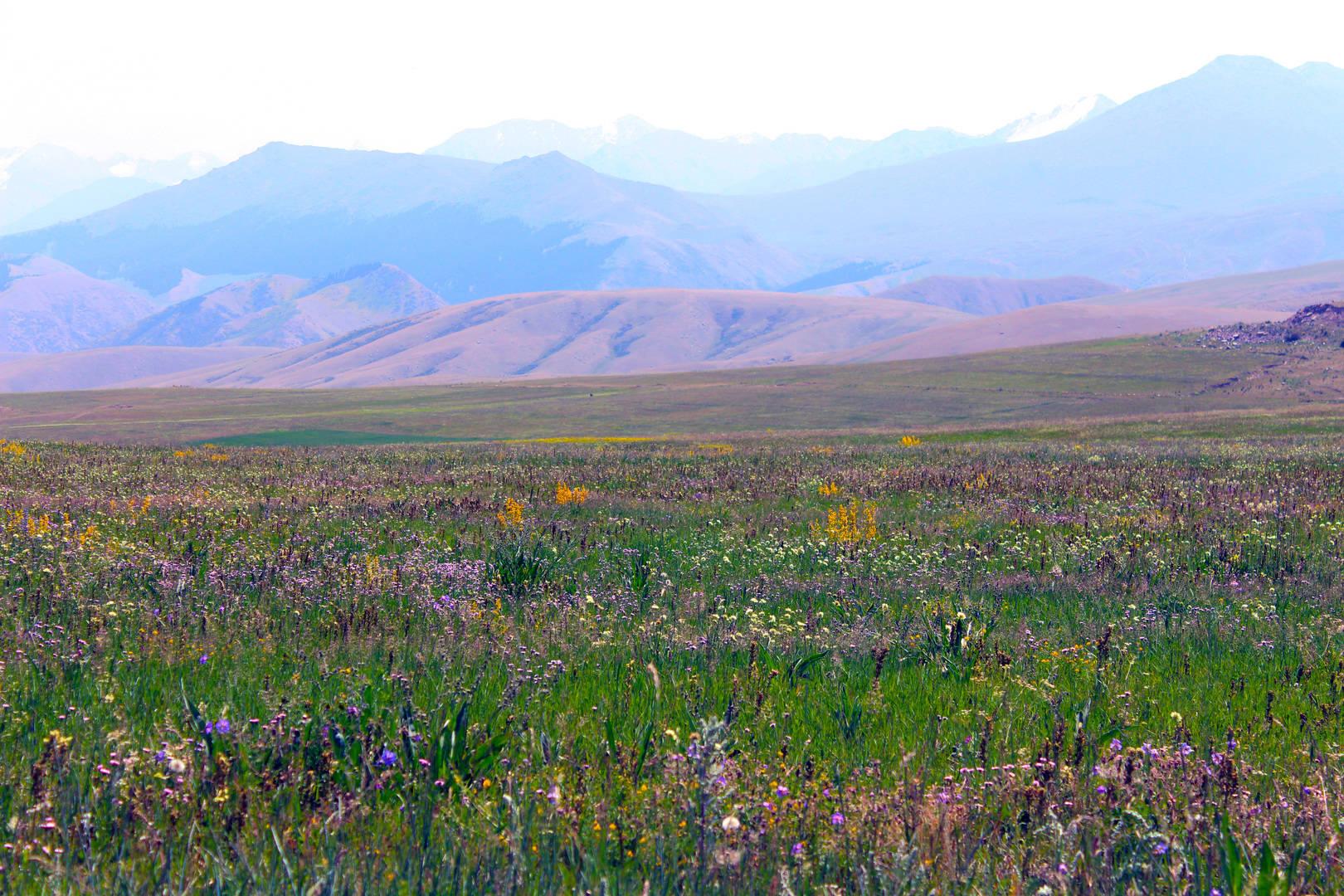 Долина Таштар-Ата