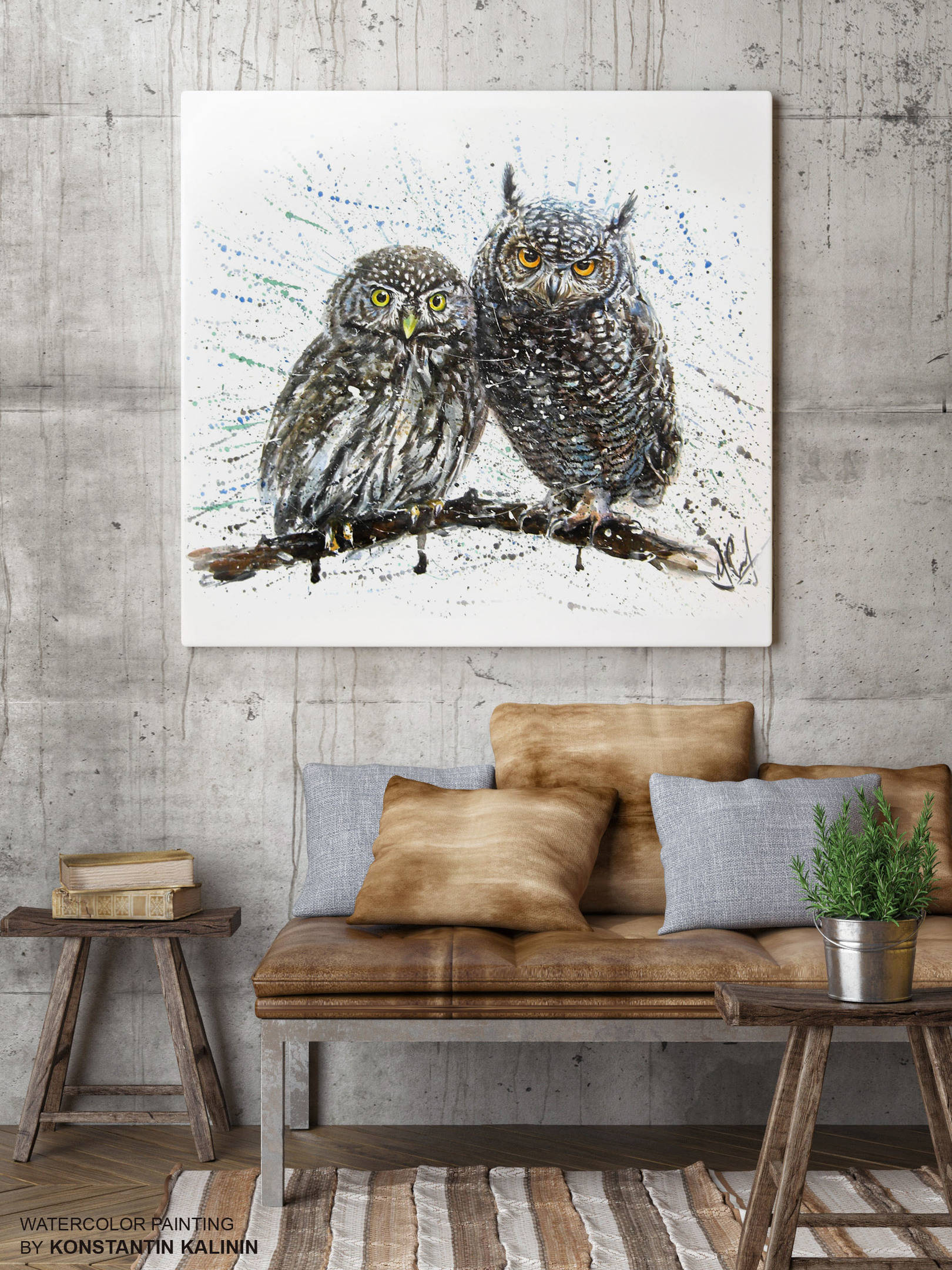Совята - Owlets