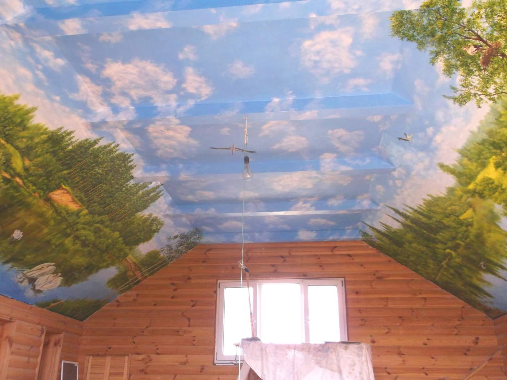 Роспись стен и потолка,3-й этаж частного дома,г.Запорожье.