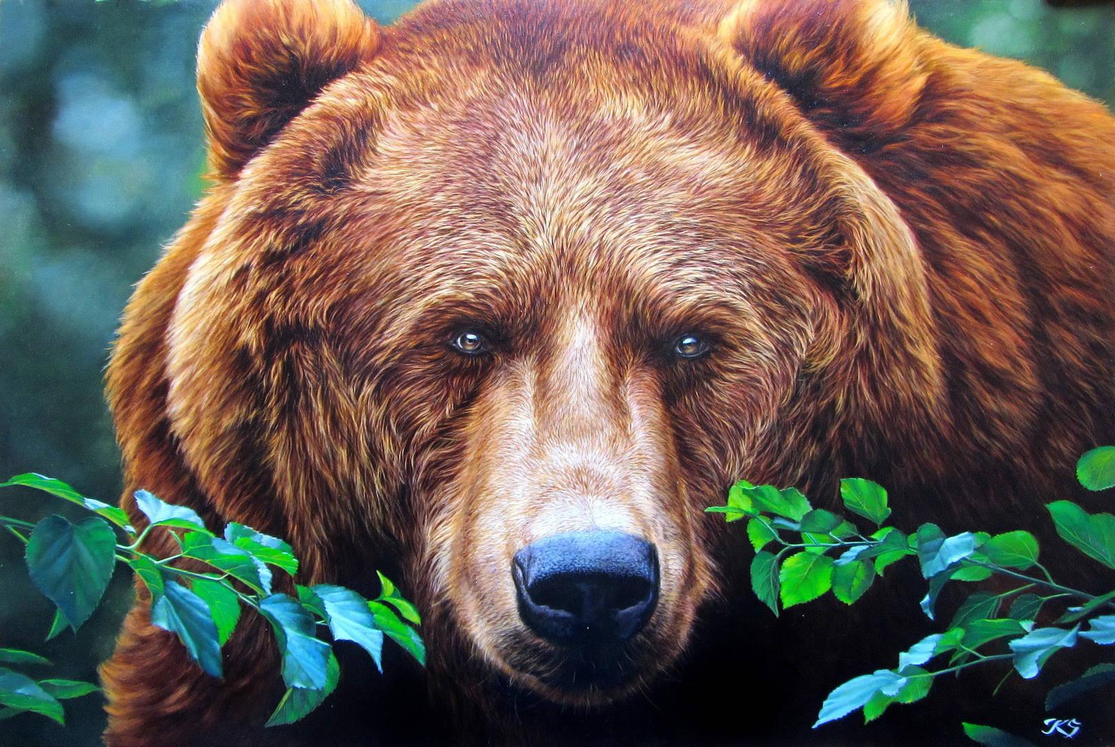 Медведь ll, 54х80,кожа, масло, 2016