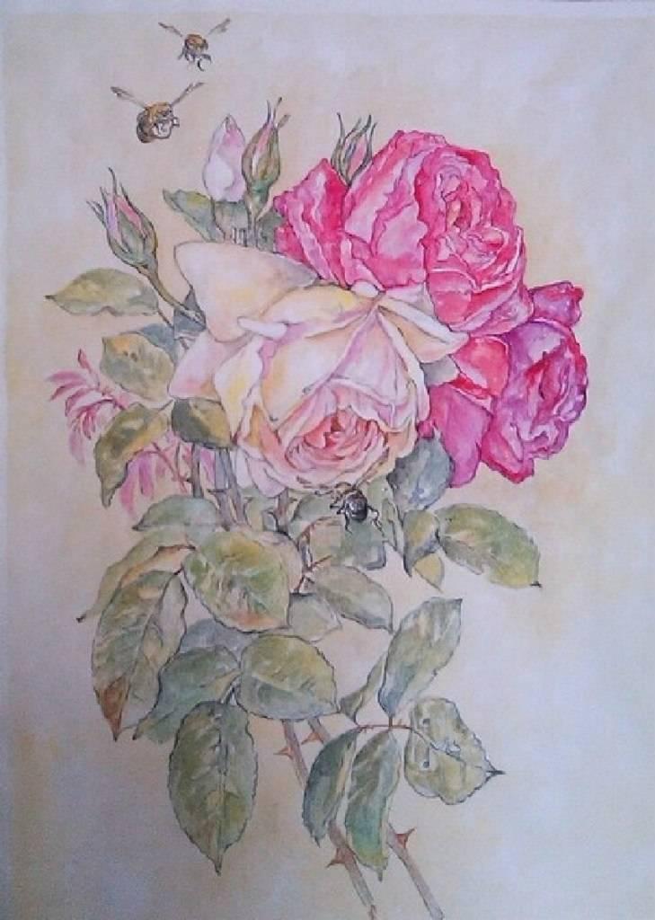 Розы и шмели (написана по мотивам картины Пауля Лонгпре), акварель, бумага, 40*30, 2016 год