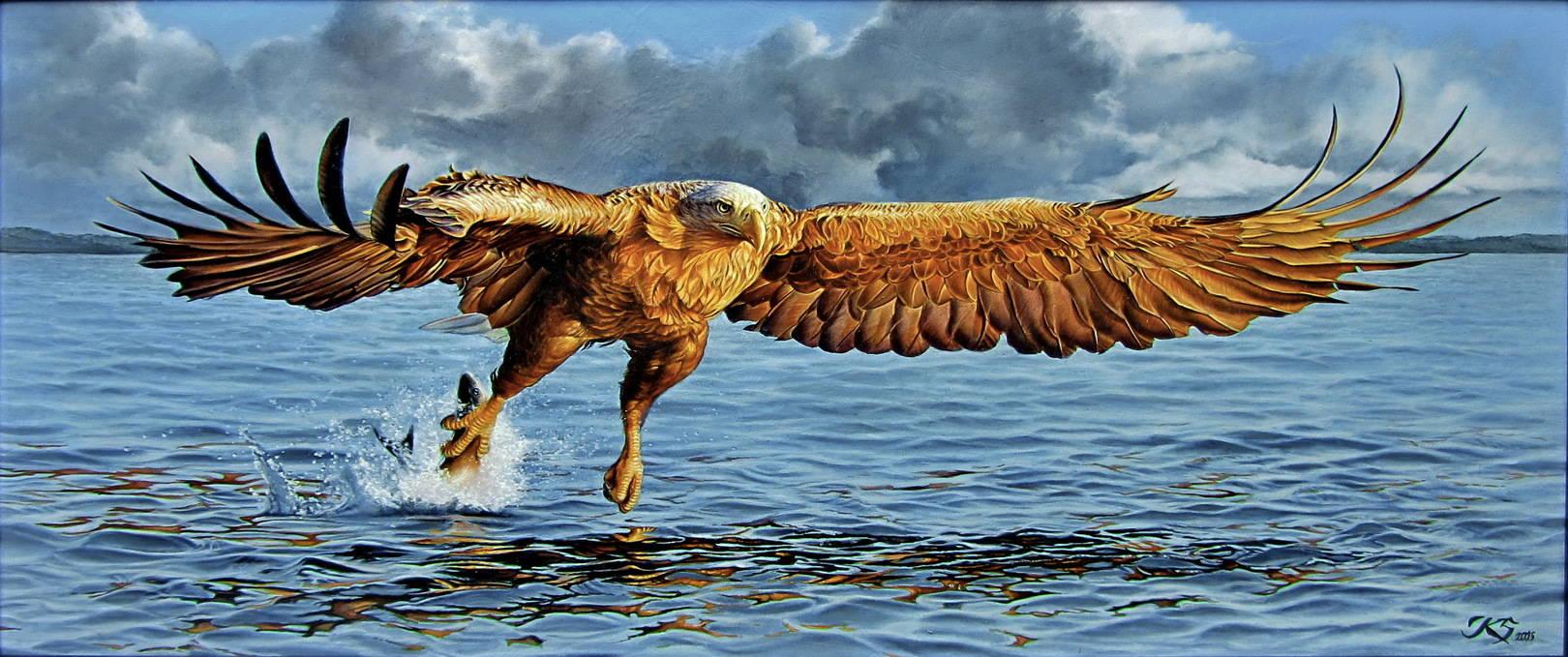 Белохвостый орлан 2,кожа, масло 2016, 34х79