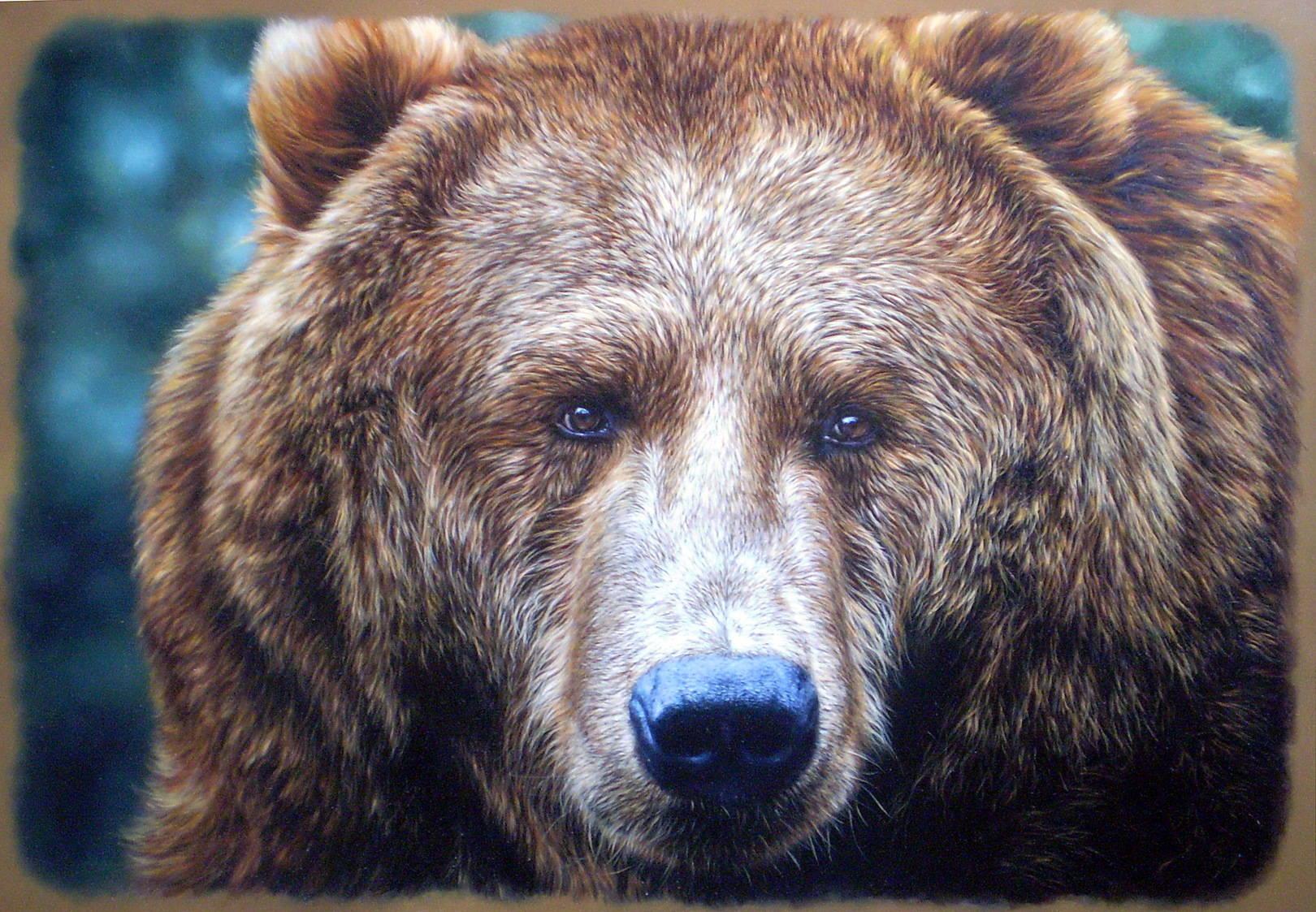 Медведь1, кожа, масло, 2012