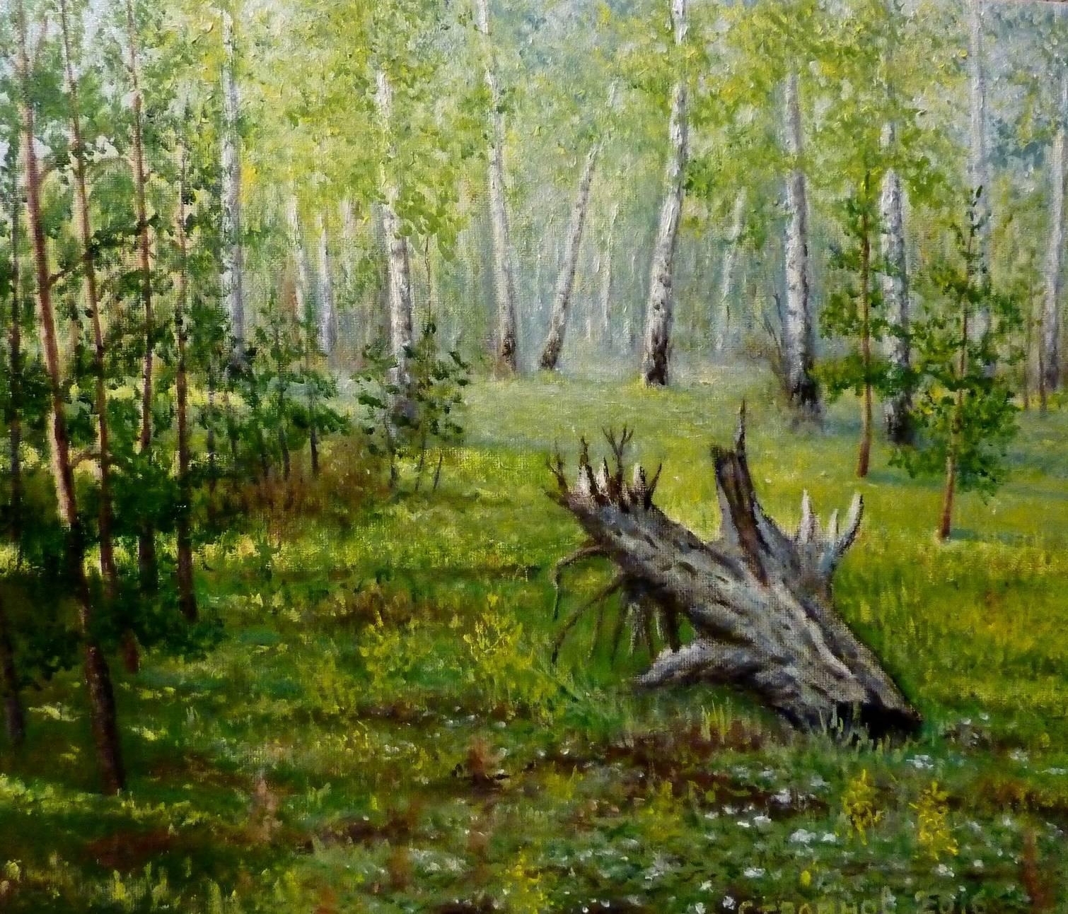 Лесные истории. Трон Хозяина леса.  холст, масло 30х35 см.