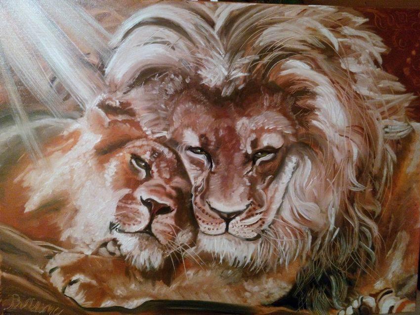 Львы. Нежность. холст, масло. 60х80см Картина маслом. Продано. Принимаются заказы на похожие картины.