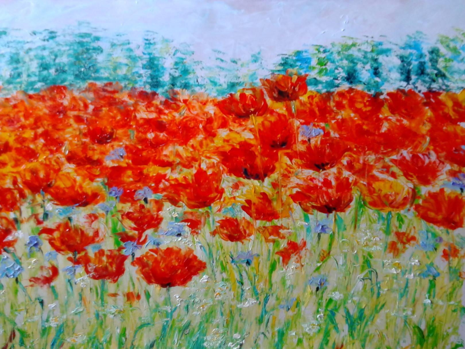 Цветы Хризантема Маки Тюльпаны