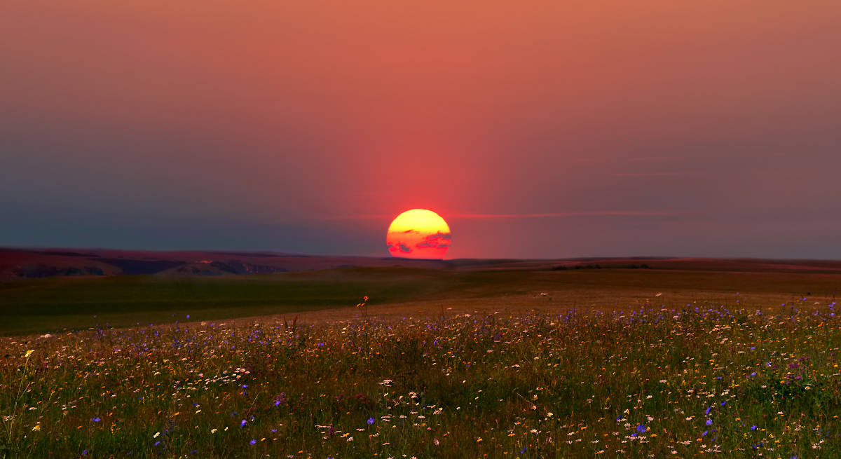 Аромат июньского заката