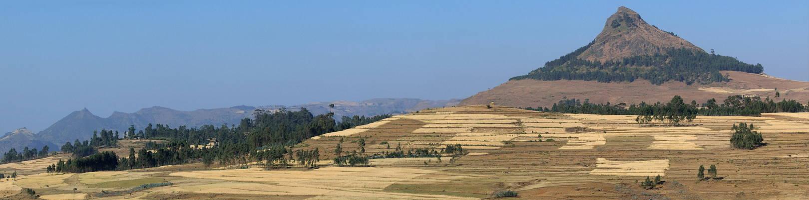 Что вы знаете об Эфиопии?