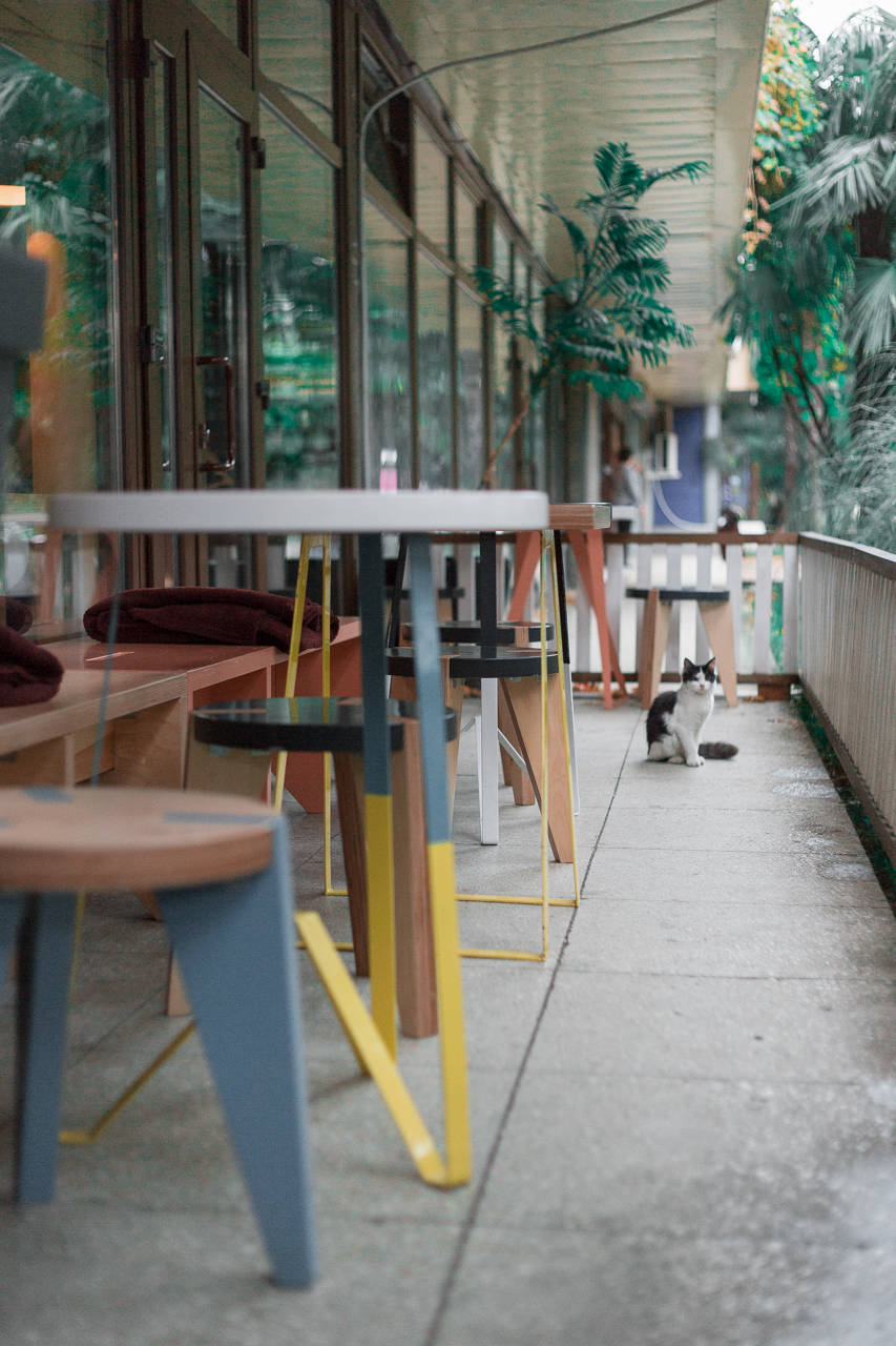 Яркий и запоминающийся интерьер новой кофейни REDCUP дополнен дизайнерской летней верандой от пермского дизайнера Саранина Артемия из студии ALLARTSDESIGN.