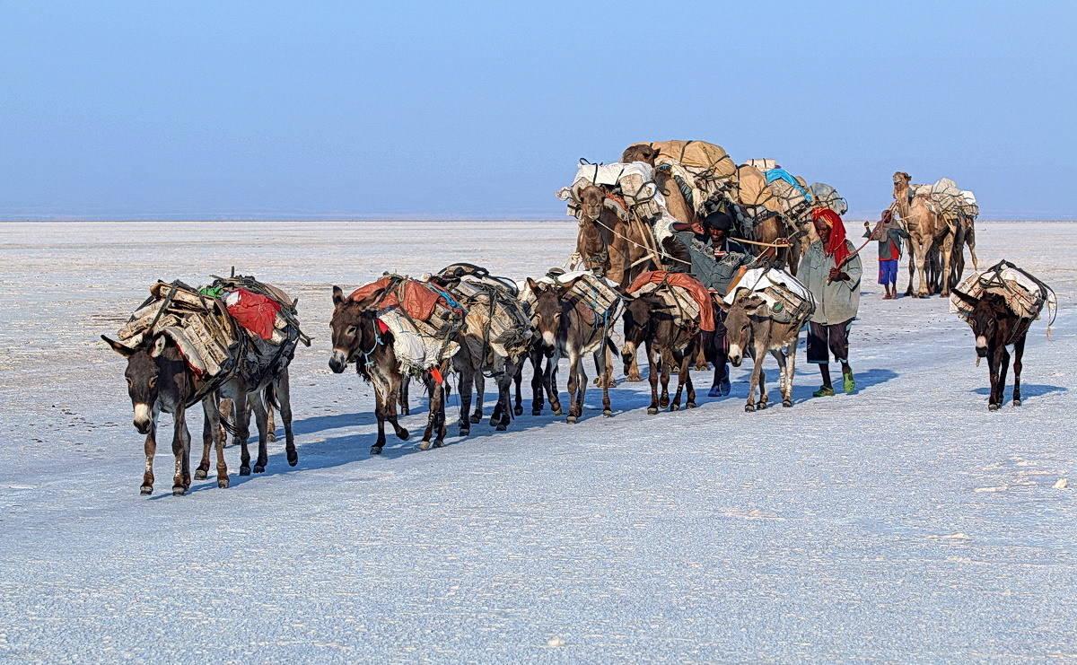 Путешествие в Эфиопию
