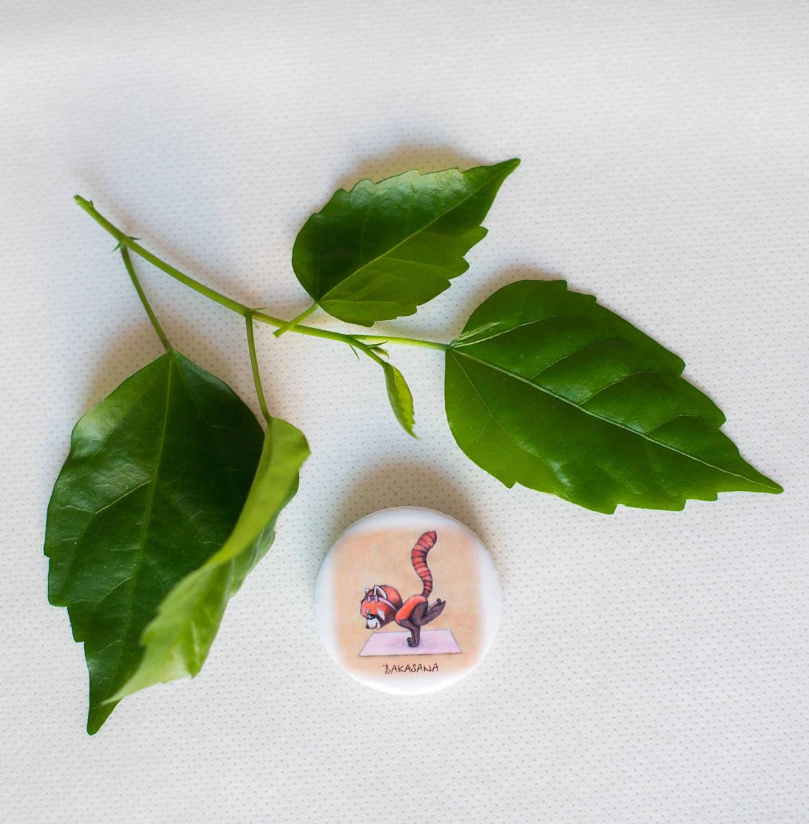 Яркие йога-значки от магазинчика bambinilavka.ru. Приятный маленький приз для юных йогов. А найти эти милые вещички вы сможете на фестивале OrganicFest.