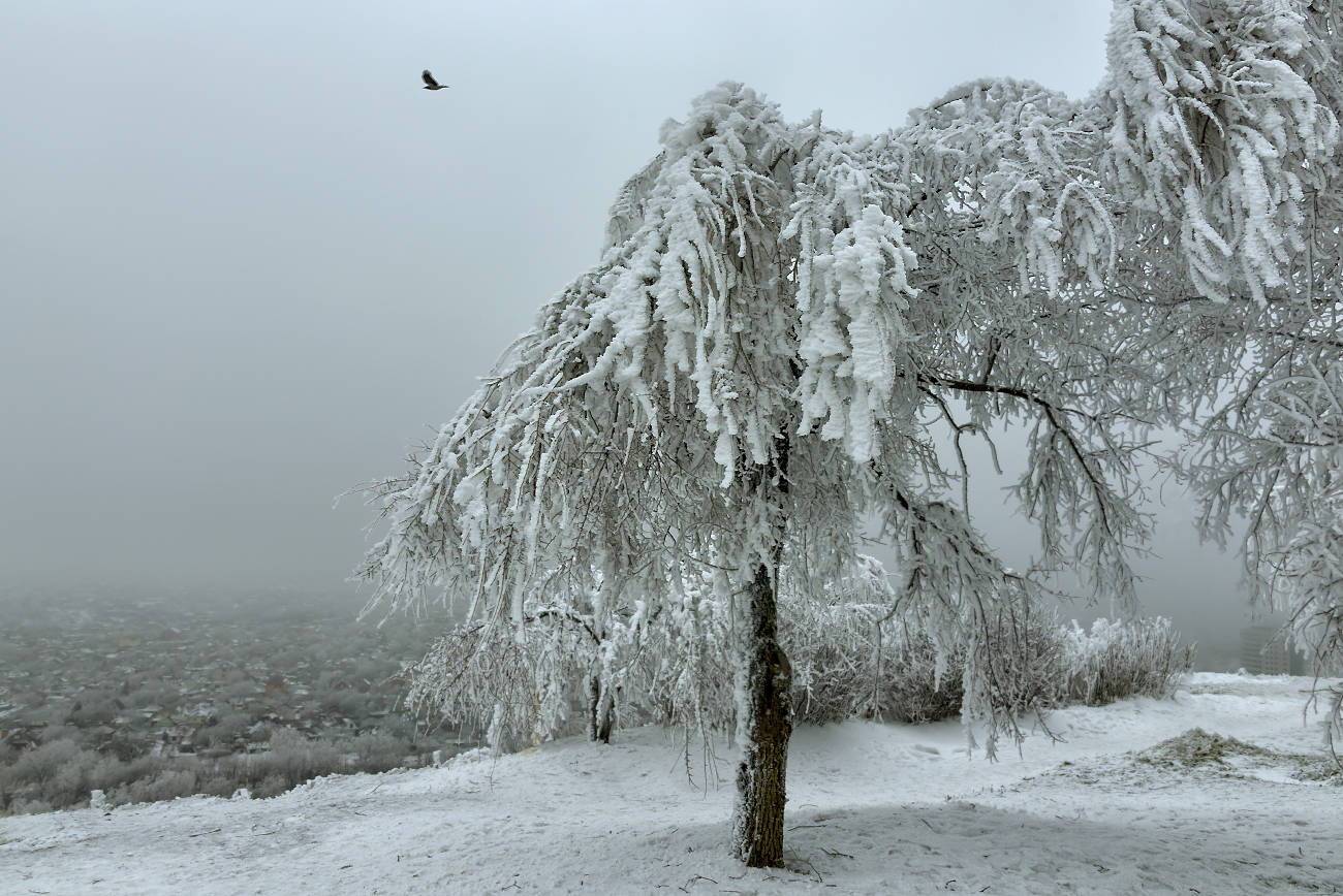Белые духи горы Горячей