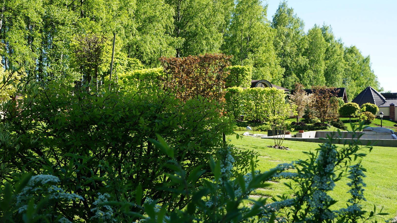 Сад многообразен по фактуре и цвету листвы растений и прекрасен в любое время года.