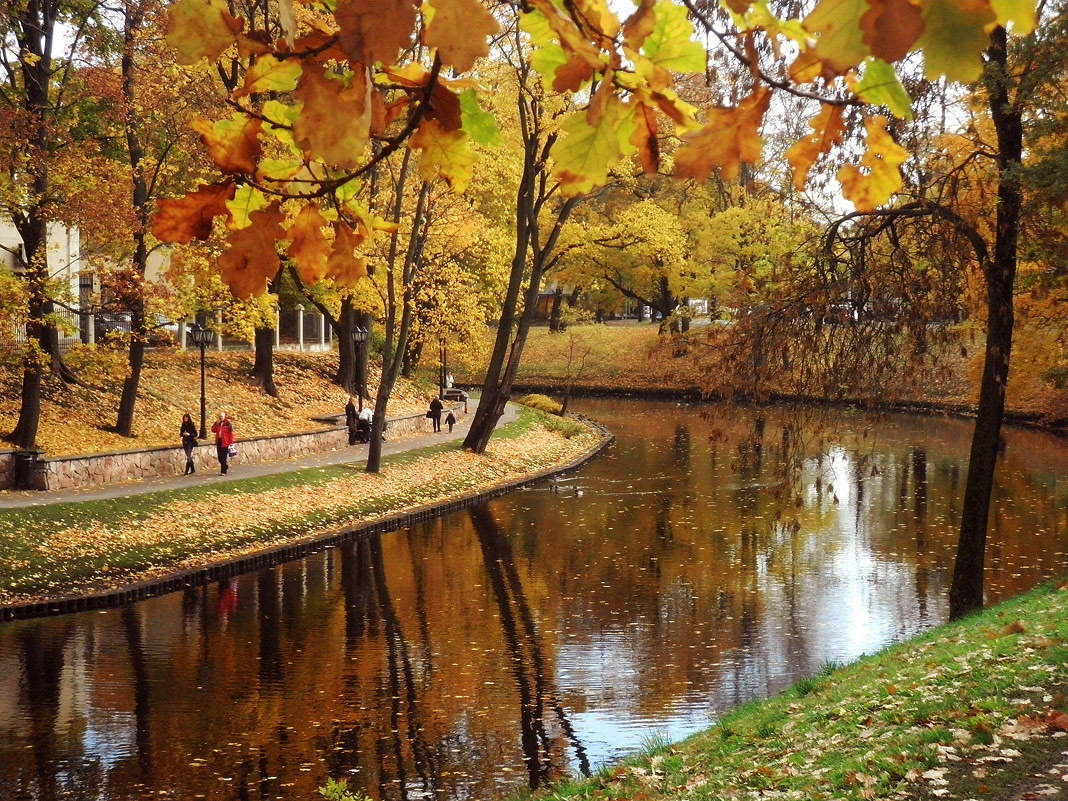 В городе осень....