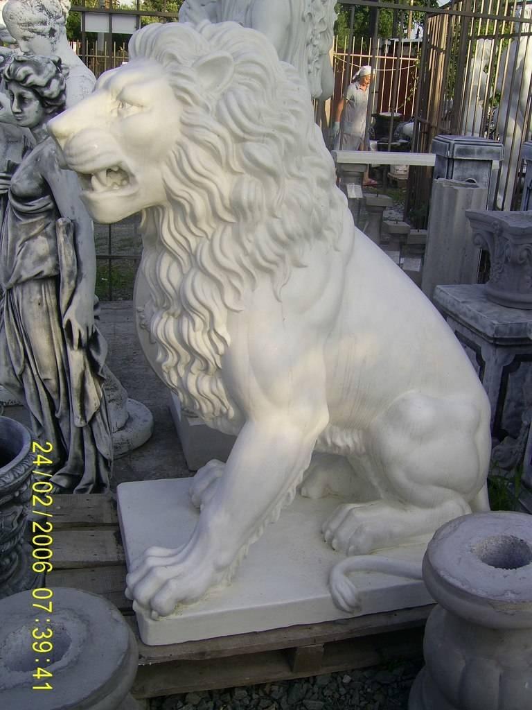 Львы в различных позах.