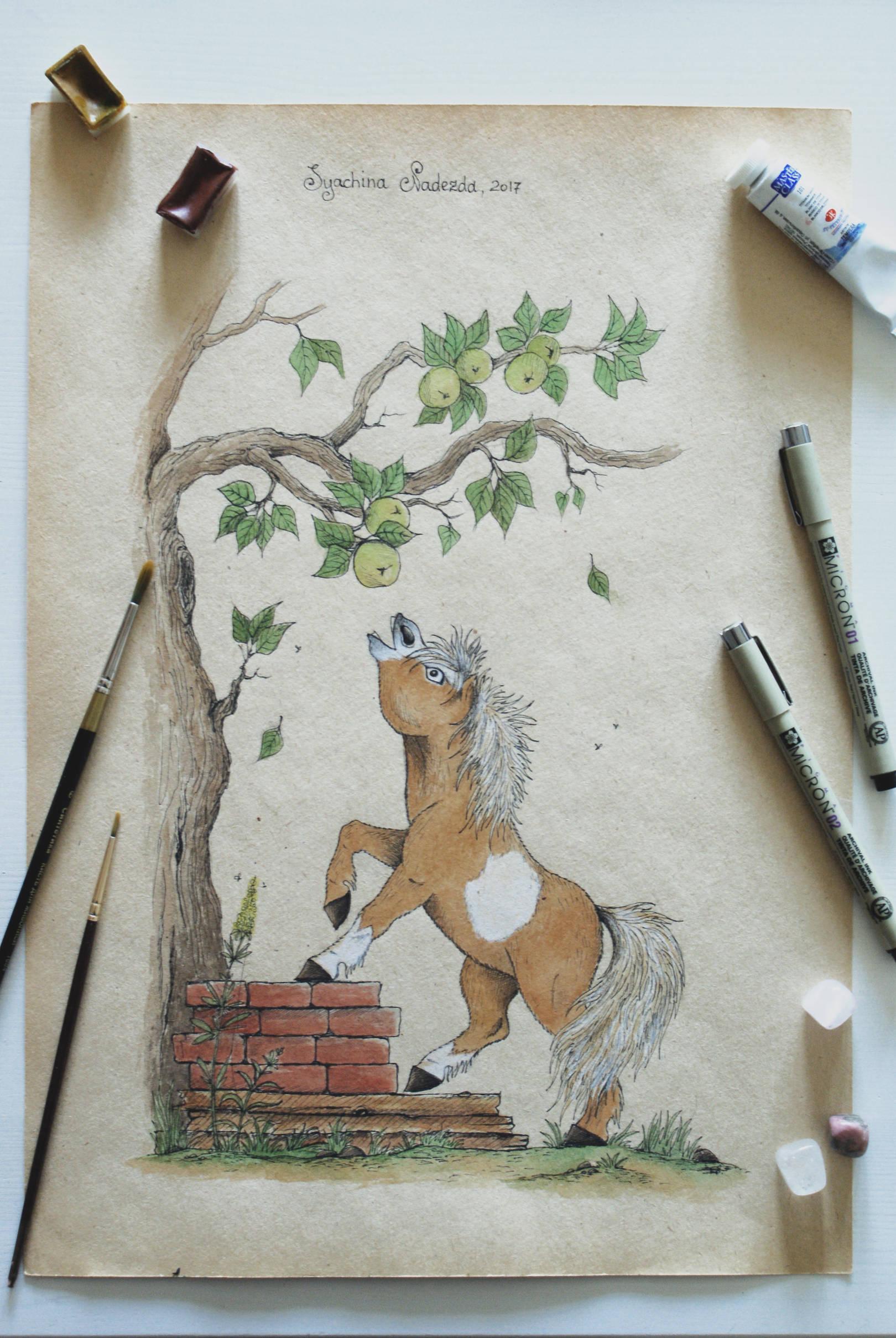 Шелтендский пони