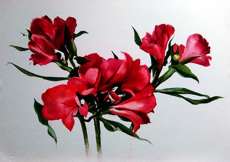 ,,АЛЬСТРОМЕРИИ,, ...цветы,подаренные мне на презентации выставки в Международной Балтийской Академии 12 апреля,как приложение к Диплому,,Студенческие симпатии,, и послужили источником вдохновения.