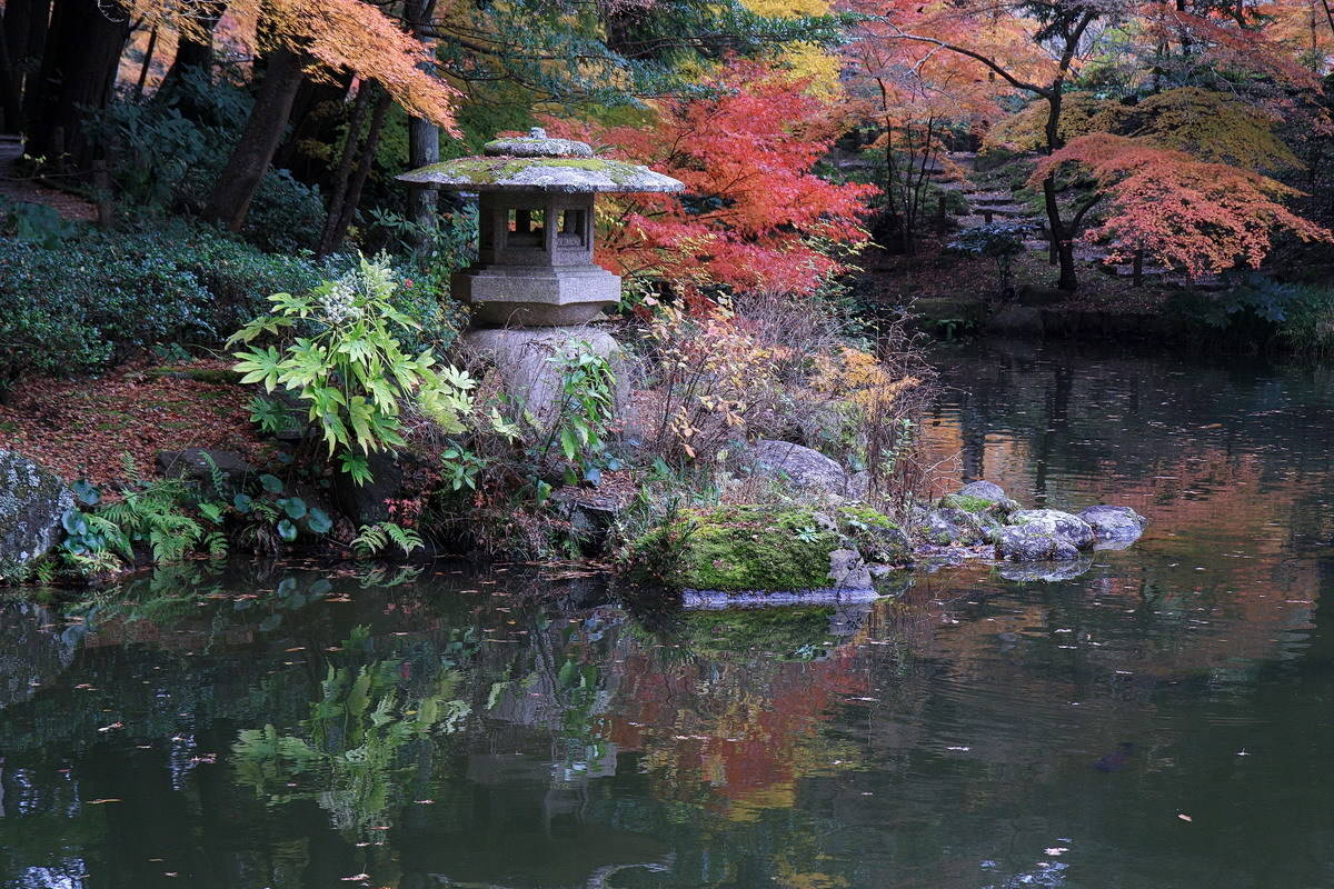 Япония. Краски осени.