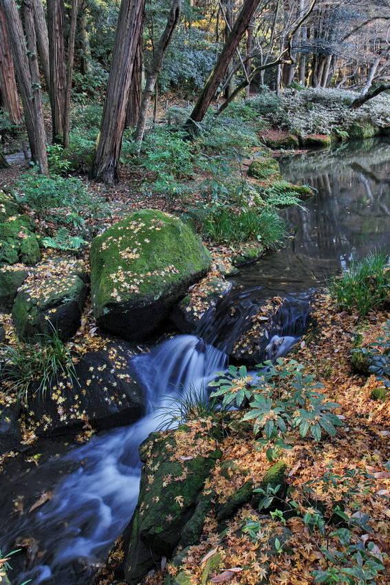 Осень в парке Наритасан (Нарита. Япония).