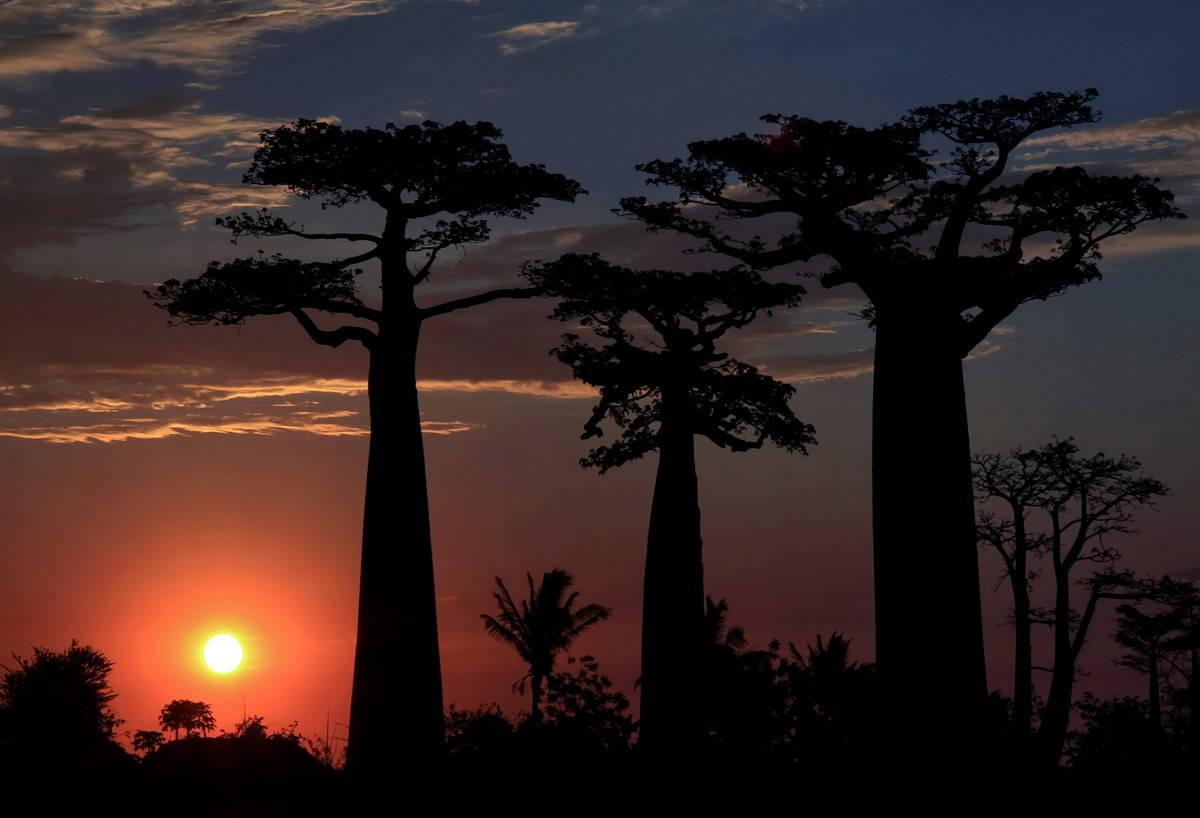 Закат на Мадагаскаре.