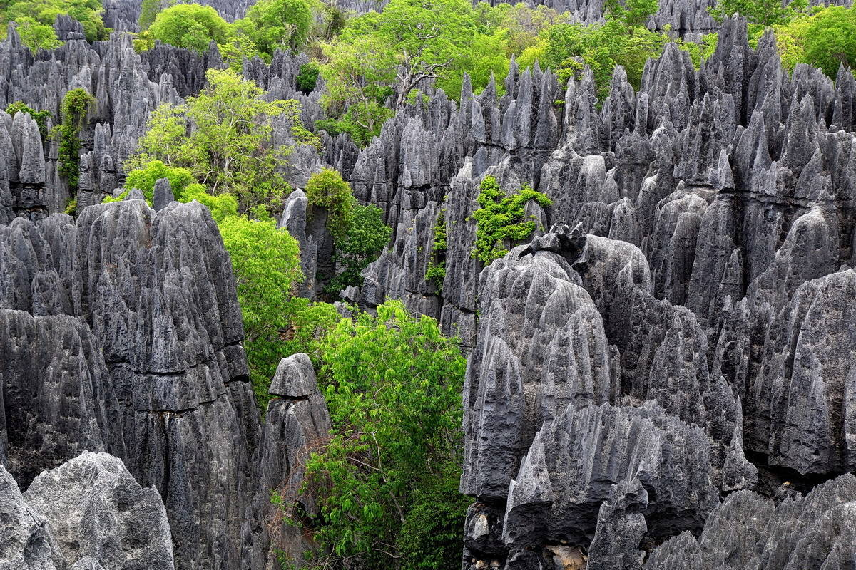 Цинги де Бемараха на Мадагаскаре.