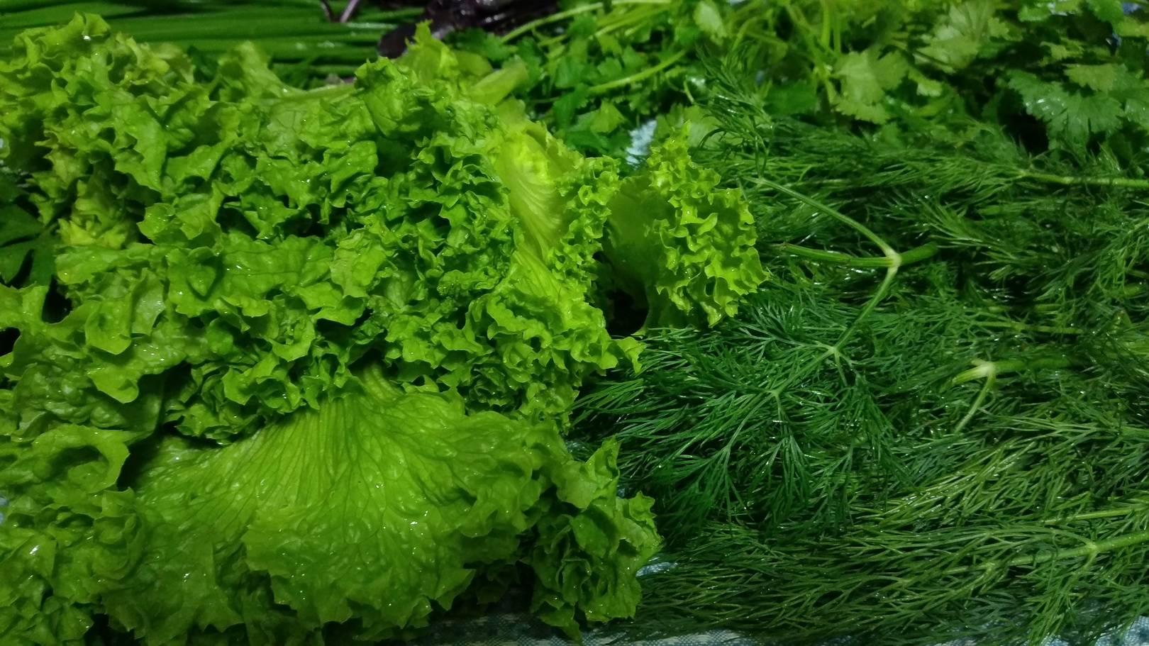 Что может быть прекраснее аромата свежей зелени
