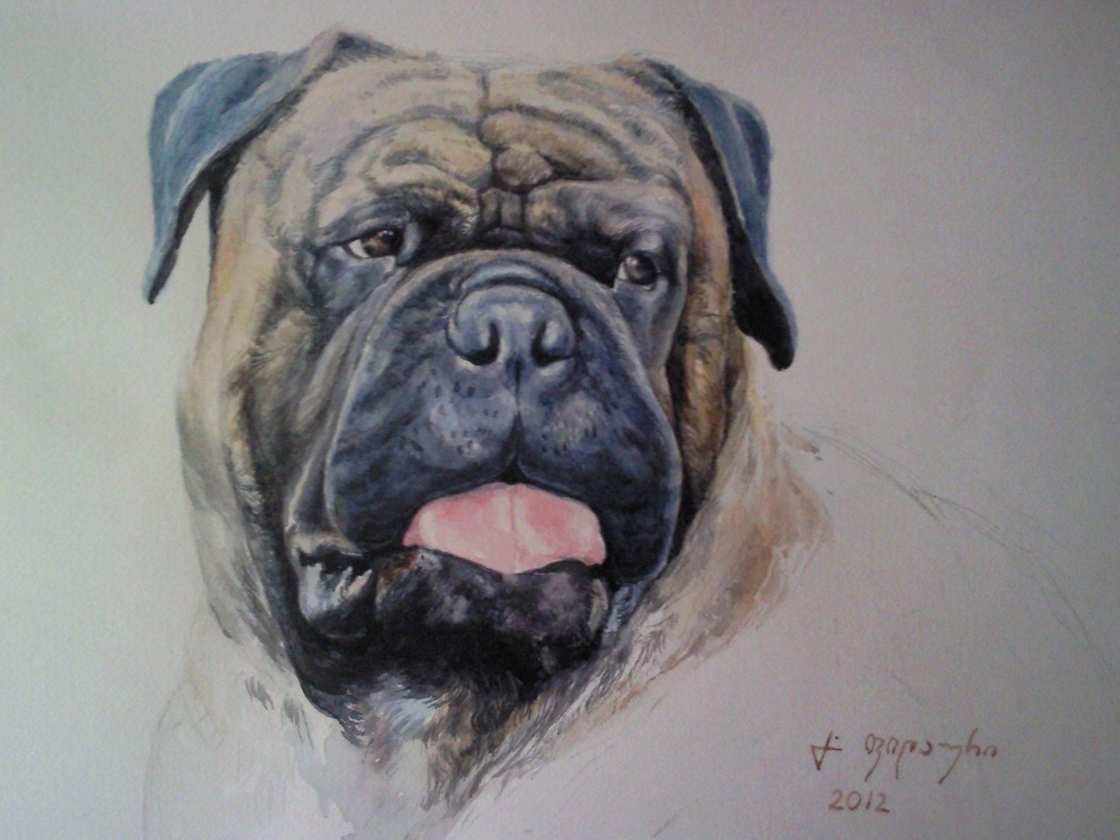 «Портрет собаки»              бумага, акварель «Portrait of the dog»           paper, aquarelle           20x28, 2012