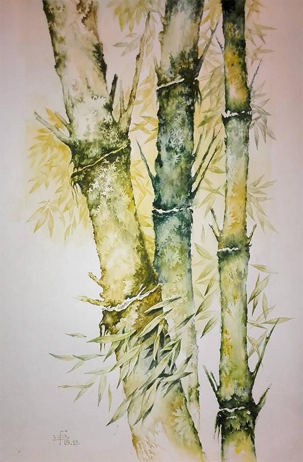 бамбук, акварель