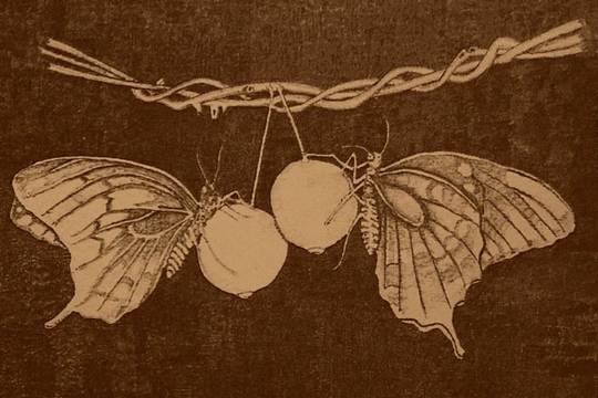 Cover fea188adac