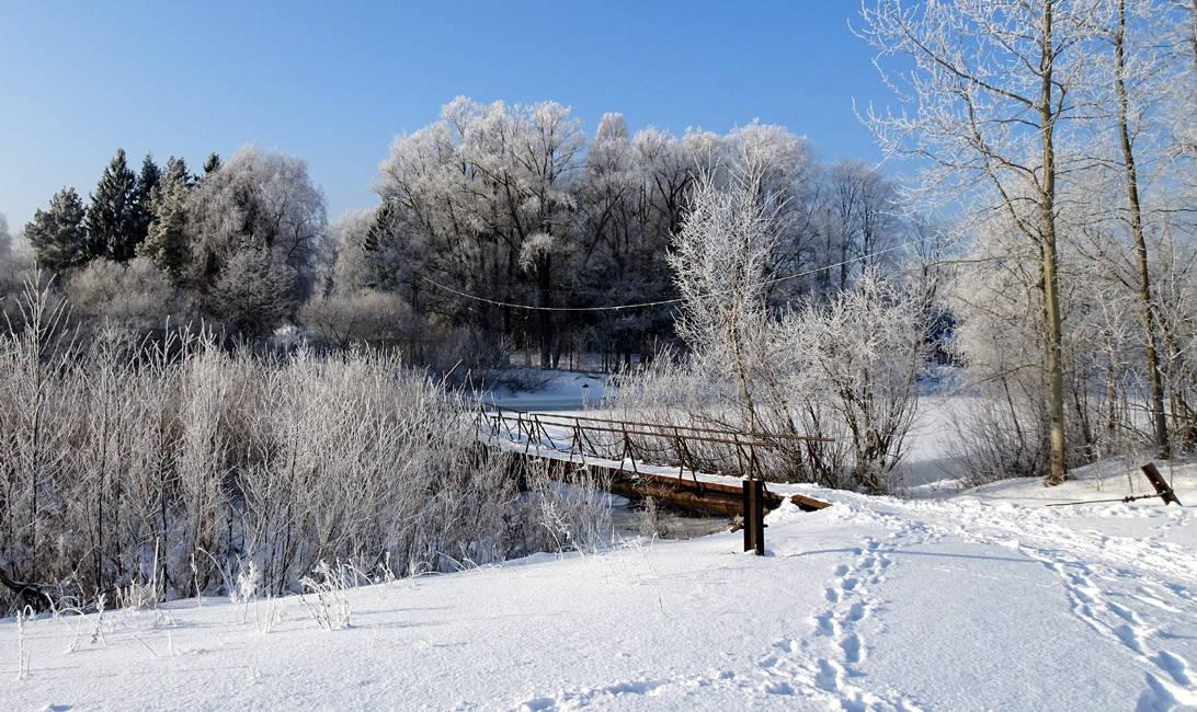Цикл фотографий,снятых 31 января,объединенных  общим названием,,Серебристая зима в Валдлаучи,,(р-н в Латвии,где проживаю и где находитс моя студия-школа)