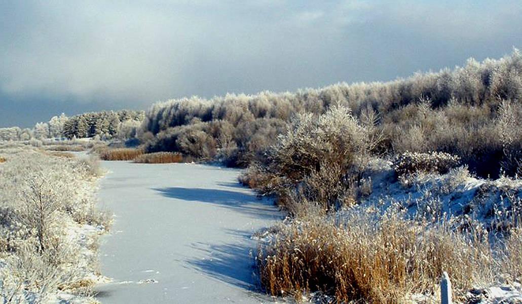 ,,Река Олекте,, в зимний день в местечке Валдлаучи.Снято на камеру и затем изображение использовано как рабочий материал для учебной работы в студии.