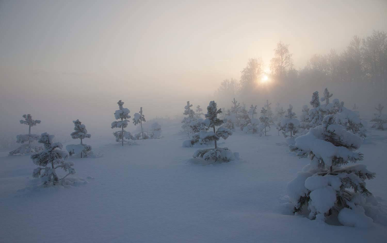 Зимняя туманность