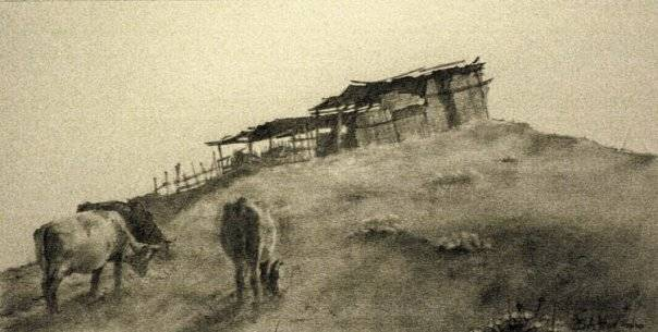 Anatolii Bahov