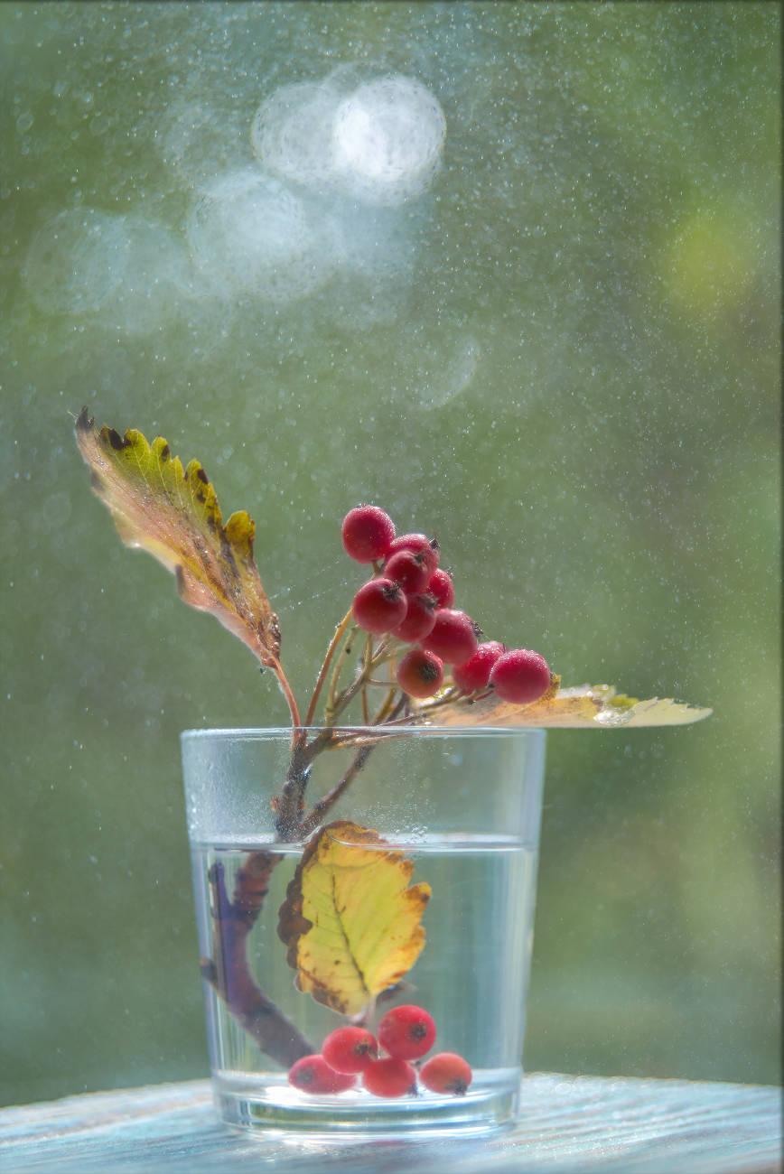 Накануне осеннего равноденствия