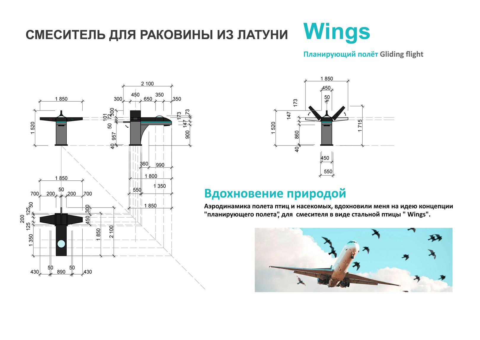 Wings/Крылья