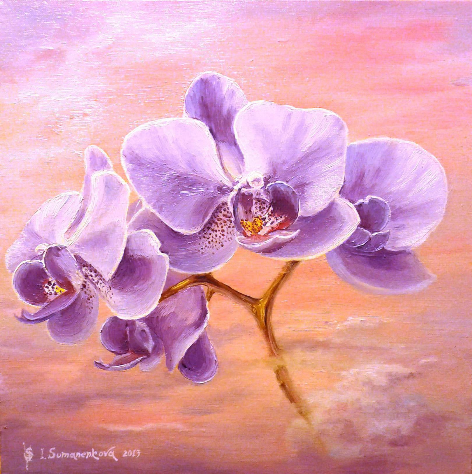 Орхидеи на рассвете / Orchids at sunset 45 x 45 cм, холст, масло, 2013 г
