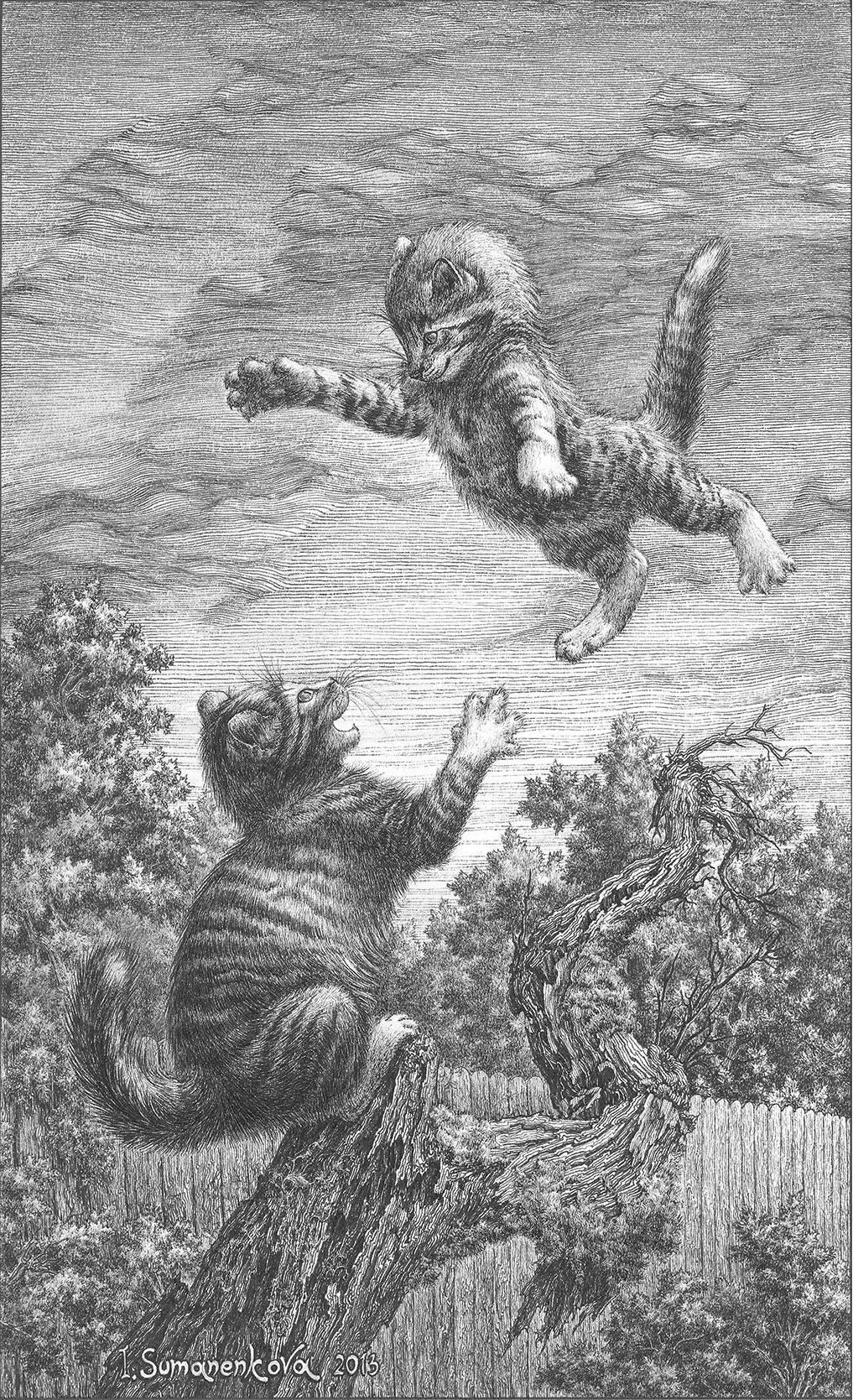 Чарівне кошеня у польоті / Cute kitten flying  17 x 28 см, тушь, перо