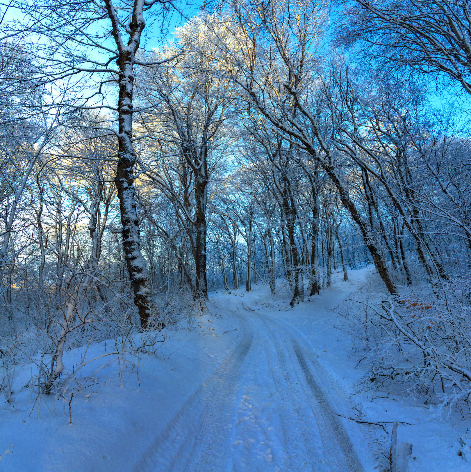 Зимней дорогой