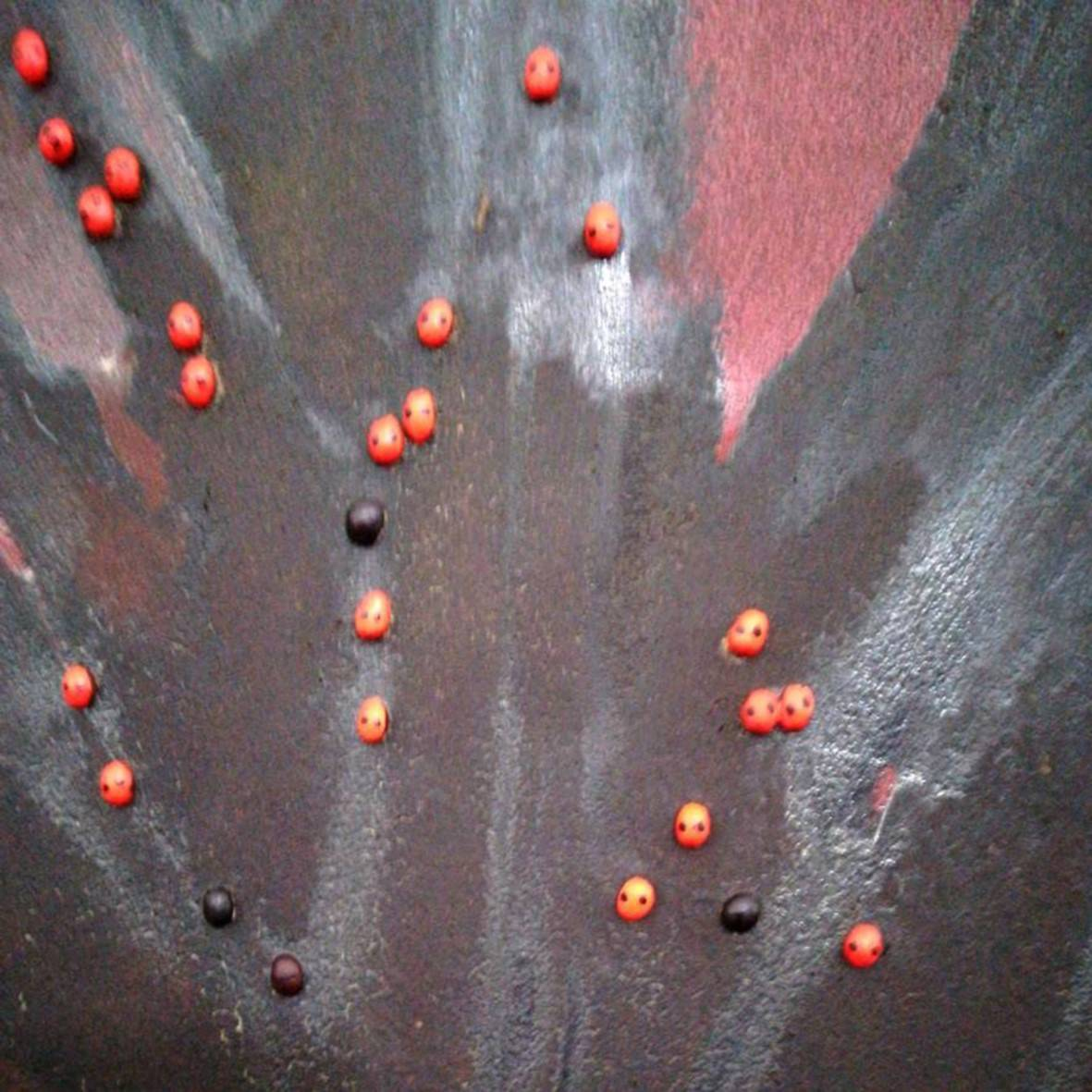 """Ladybugs"". 2004. Mixed /rigid. Detail. 116 x 116 cm. http://bohemiogus.blogspot.com http://www.facebook.com/atomista"