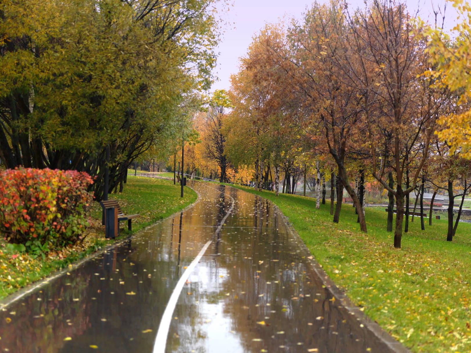 Московские парки