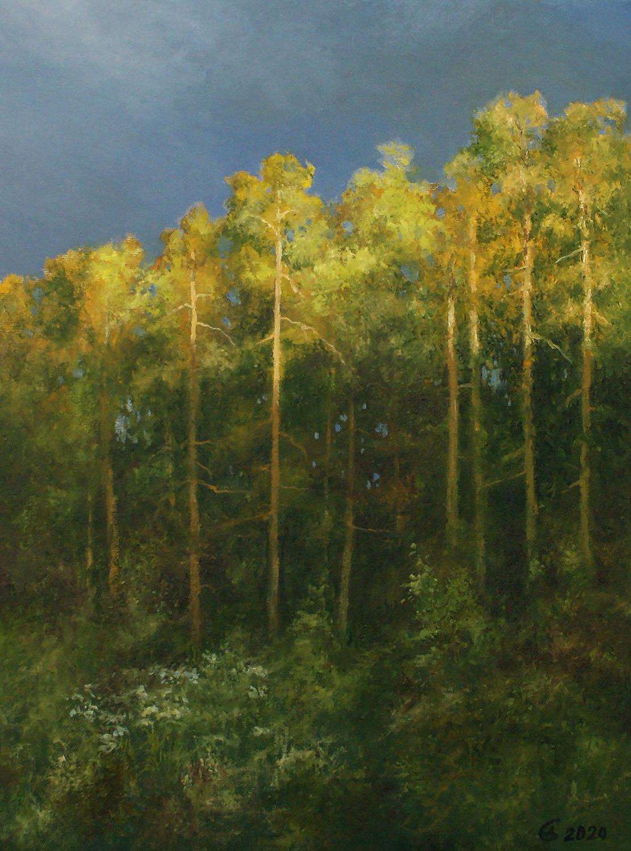 Вечер в лесу перед грозой - холст на картоне/масло, 40х30, 2020