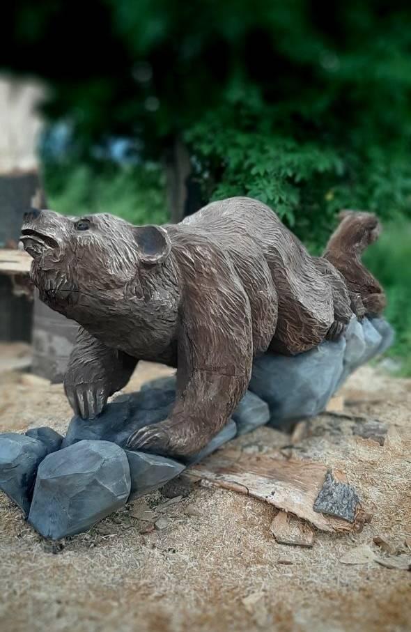 Медведица