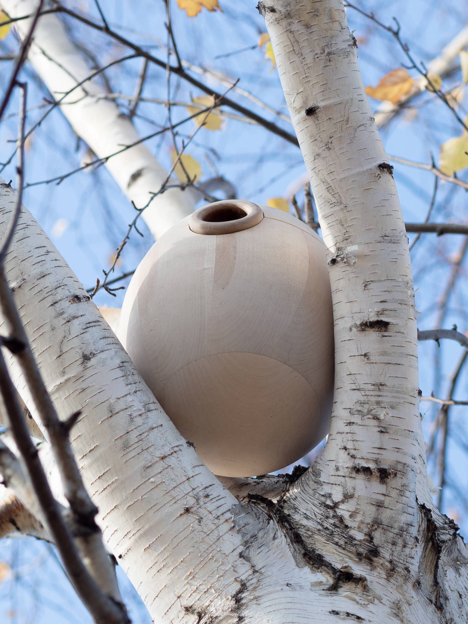The birdhouse helps to redefine the garden and take care of the environment. Why birds? Birds protect nature from insect pests, and their singing helps to relax, distracting from sad thoughts and everyday life. It was decided to use the principles of design thinking and move away from the usual birdhouses. Studies have shown that thick branches and hollows are ideal nesting sites. Bird's house in its properties is close to a natural hollow. Its round shape, pleasing to the eye, makes it more natural and invisible on wood. The streamlined shape helps to reduce the impact of rain, snow and wind. Due to the low center of gravity, the house is securely fastened between the branches without damaging the tree. The body and mechanisms are made of wood with natural protective coatings, which makes it more environmentally friendly.