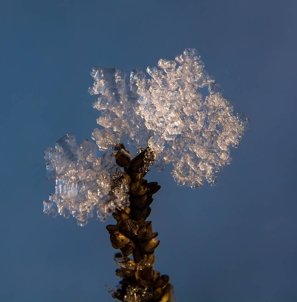Зимний хрусталь Winter Crystal