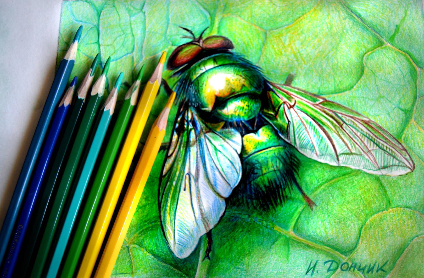 Цветными карандашами.