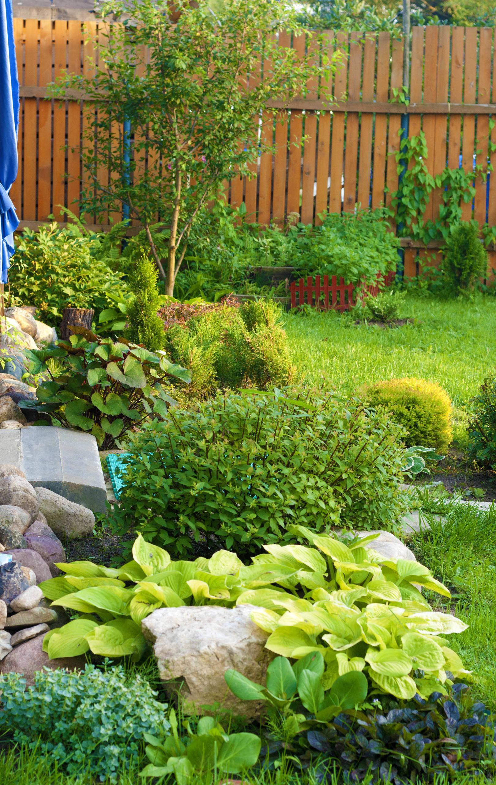 Озеленение и благоустройство зоны отдыха на территории частного сада