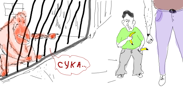 Illustration