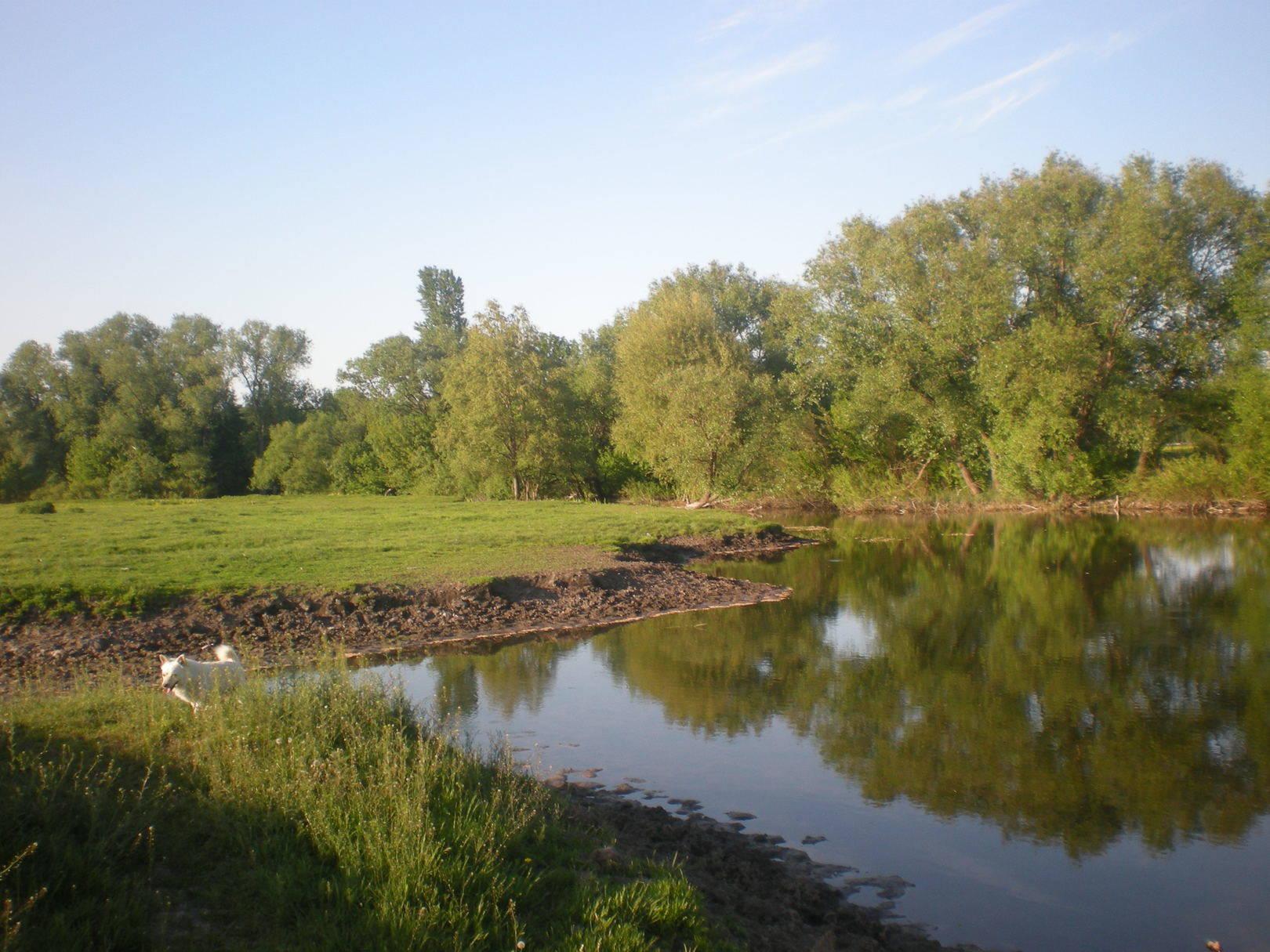 Лето на реке Камянка