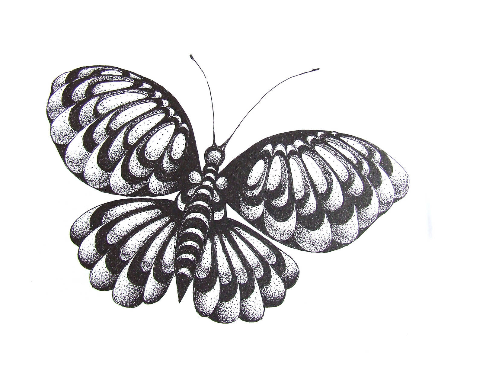 "серия "" Бабочки "" 2013г."